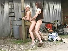 Silvia Saint Sex to Farmboy - Classics